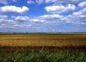 Lincolnshire_cropped